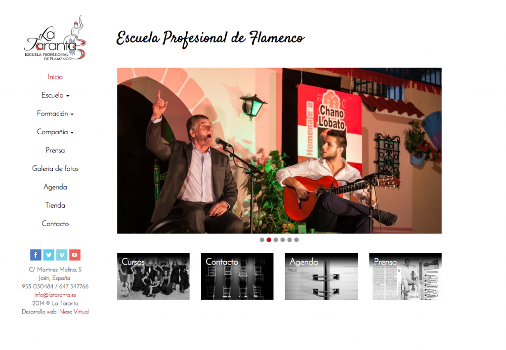 Diseño de página web para escuela de flamenco de Jaén La Taranta